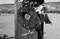 Manzanar 36