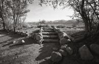 Manzanar 29