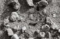 Manzanar 43