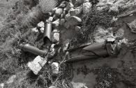 Manzanar 19