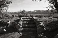 Manzanar 31