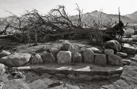 Manzanar 28