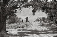 Manzanar 4